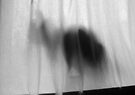 Mikino - Behind the Veil 4 by Jaeda DeWalt