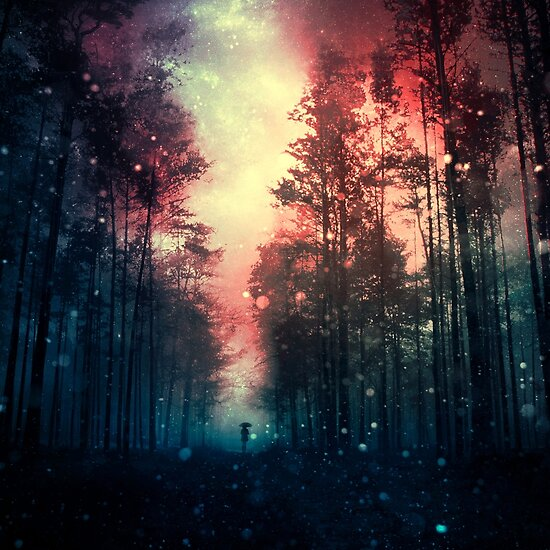 Magical Forest II by baxiaart