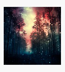Magical Forest II Photographic Print