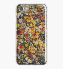 Fall Leaves iPhone Case/Skin