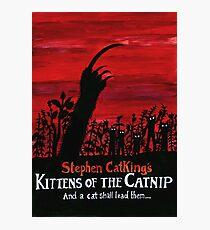 Kittens of the Catnip Photographic Print