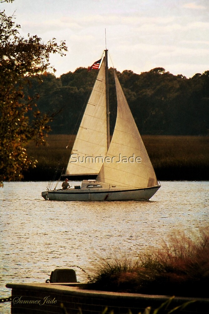 Sailboat ~ Heading Home Under Full Sail  by SummerJade