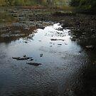 Juniata River by Quinn Blackburn