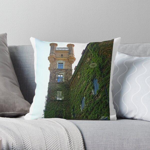 Bozen Throw Pillow