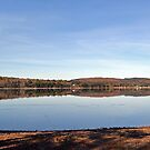 Lake Reflection by Martha Medford