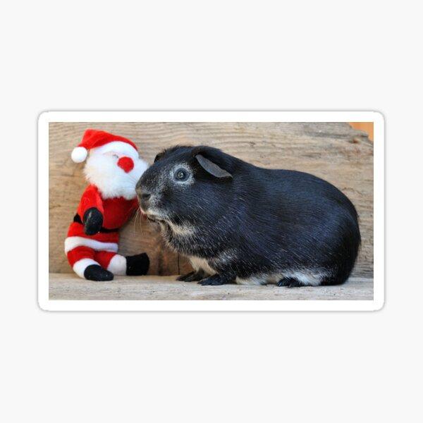 Santa Claus with Genia Pig Sticker