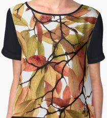 Backlit Colour Women's Chiffon Top