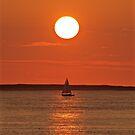 Sous le soleil exactement by Jean-Luc Rollier