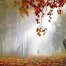 Autumn Birches by Igor Zenin
