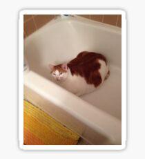 Mr. Bathtub Sticker