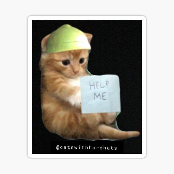 """Help me"" kitten hard hat sticker Sticker"