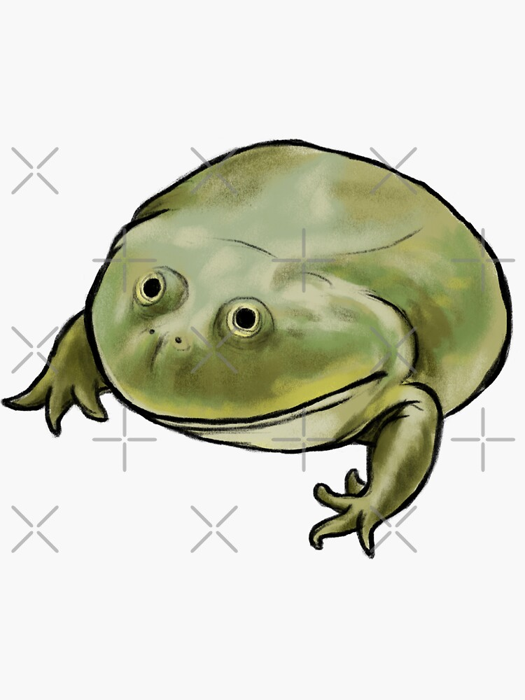 Wednesday Frog Art No Text by DingHuArt
