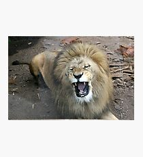 ROAR! Photographic Print