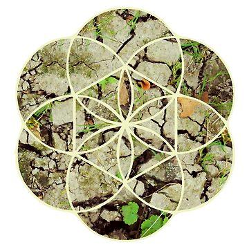Geometric Dry Ground by rcschmidt