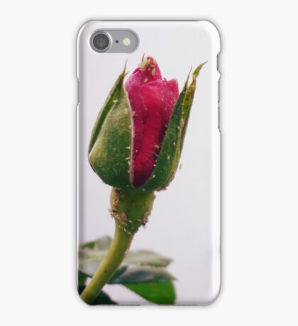No Rose is JUST a Rose... iPhone Case/Skin