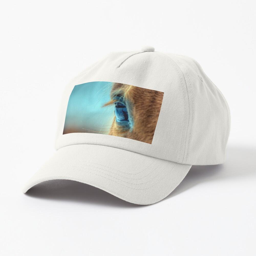 Horse Eye Cap