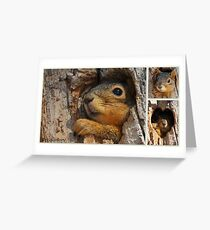Treehouse Greeting Card