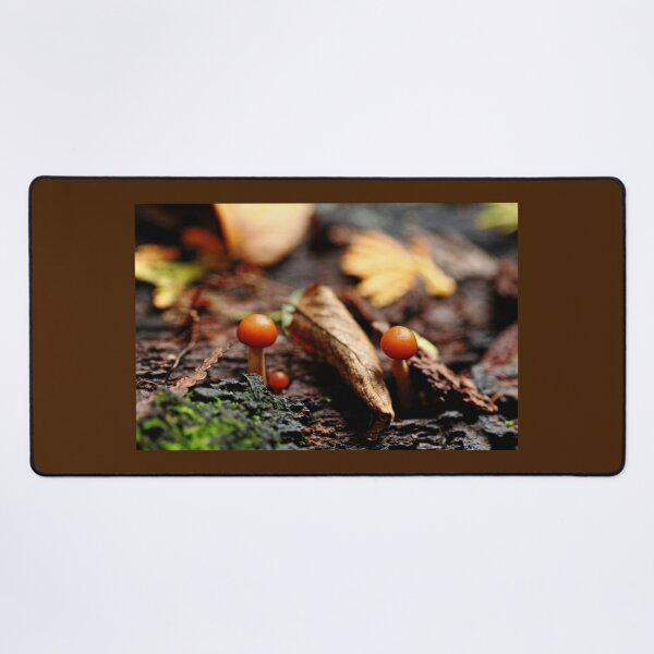 Little Life In The Forest Desk Mat