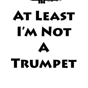 Trumpet Fail by BandKids4Life