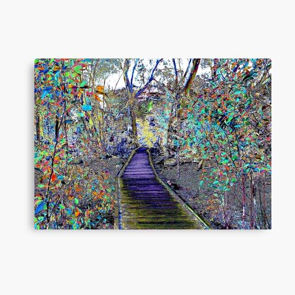 Natures Colourful Boardwalk Canvas Print