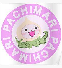 PACHIMARI Poster