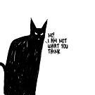 BLACK CAT von rauschsinnig