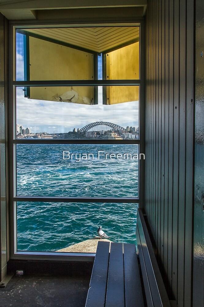 Escher's Pigeon - Sydney Harbour by Bryan Freeman