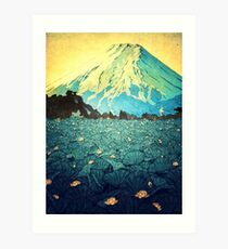 Waddling through Kennijo Lake Art Print