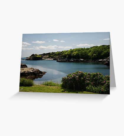 The Cove Greeting Card