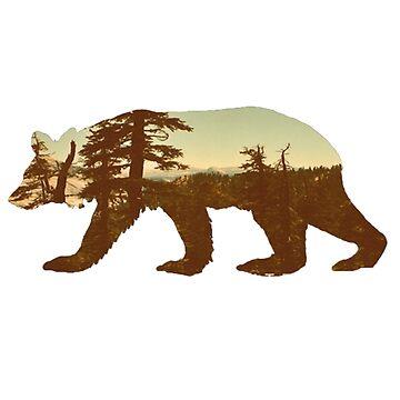 Bear by annarr