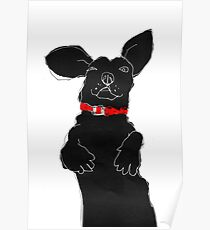 red collar Poster