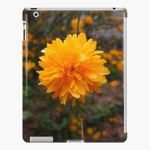 Secret Garden | Little sun iPad Snap Case