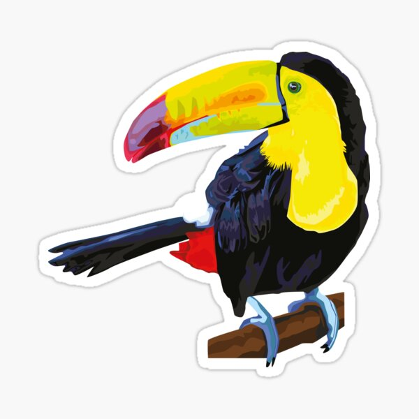 Toucan illustration Sticker