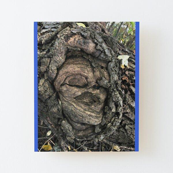 Lámina montada de madera
