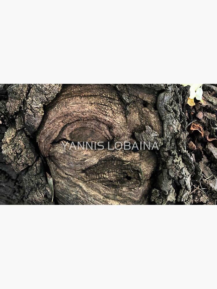 FEMALE SPIRIT AN OAK TREE By Yannis Lobaina  by lobaina1979