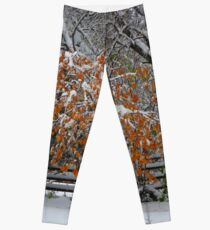 Oct Snowstorm 2016 Leggings