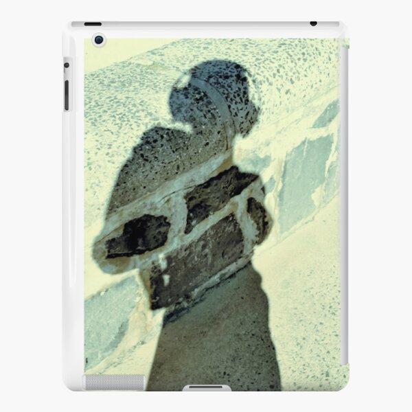 bluestone (sp) iPad Snap Case