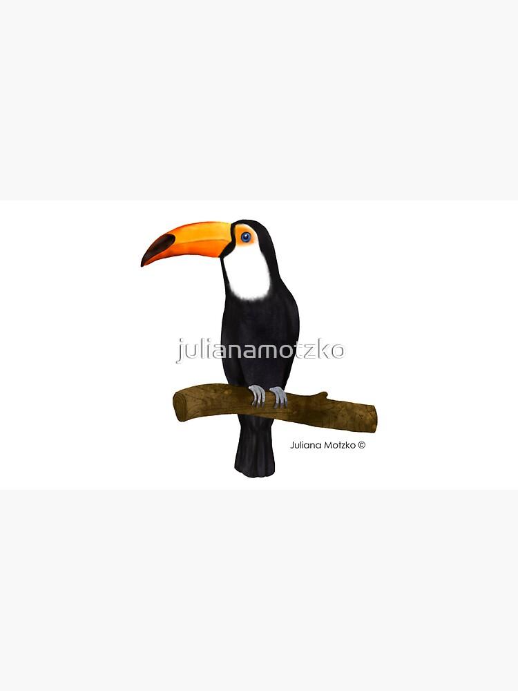 Toucan by julianamotzko