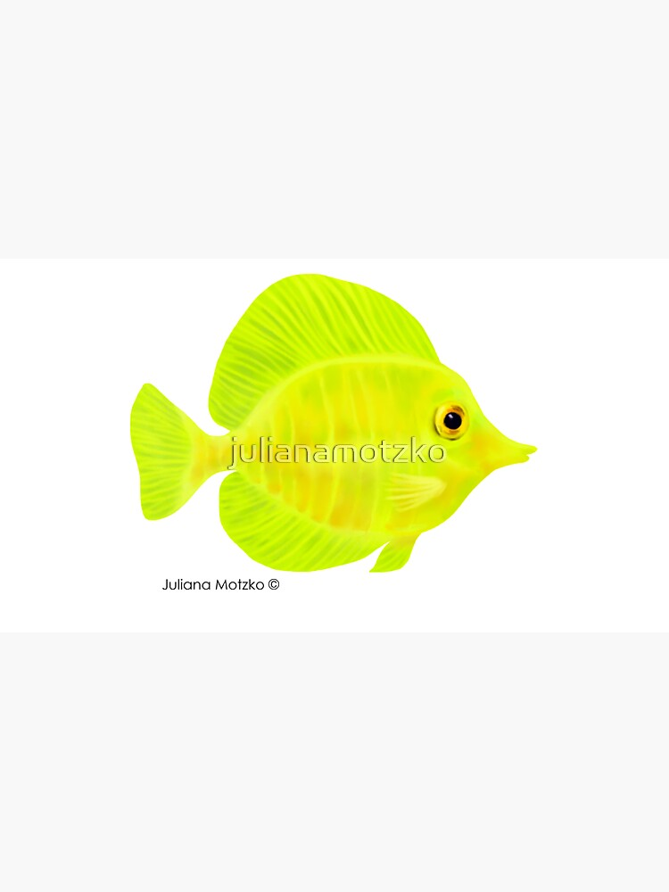 Yellow Tang Fish by julianamotzko