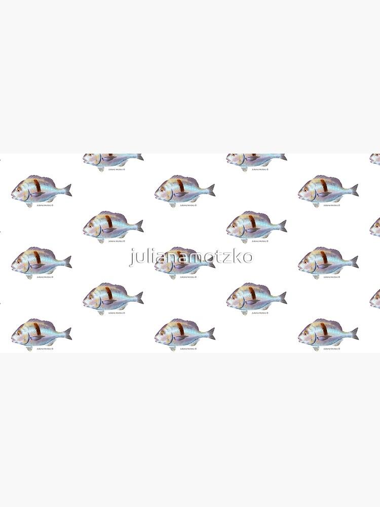 Xantic Sargo fish by julianamotzko