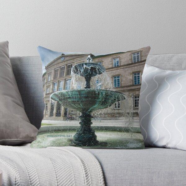 Neue Aula Fountain, Tübingen, Germany Throw Pillow
