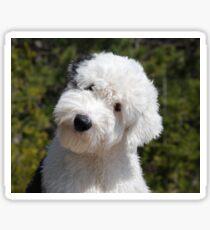 old english sheepdog puppy Sticker