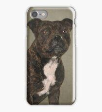 Staffordshire Bull Terrier Portrait iPhone Case/Skin