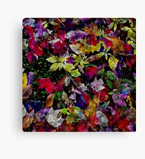 Quebec Autumn Leaves Abstract Canvas Print