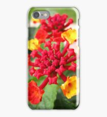 Lantana II iPhone Case/Skin