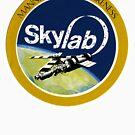 skylab by although
