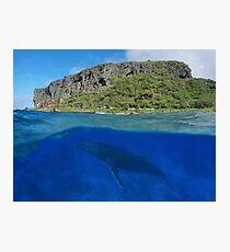 Coastal cliff split with whale underwater sea Photographic Print