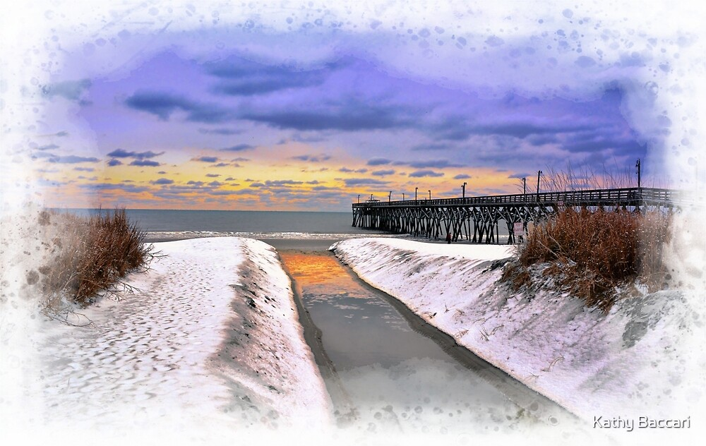Myrtle Beach Ice Storm by Kathy Baccari