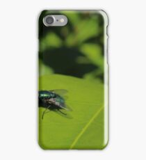 Green Bottle Fly On Leaf iPhone Case/Skin