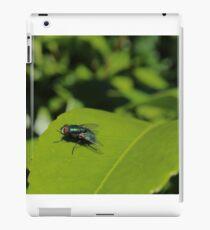Green Bottle Fly On Leaf iPad Case/Skin